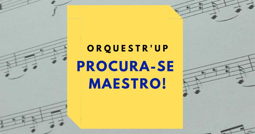 maestro (4)
